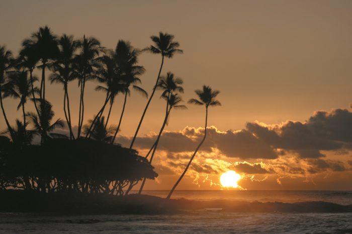 Hawaii Multi Centre image
