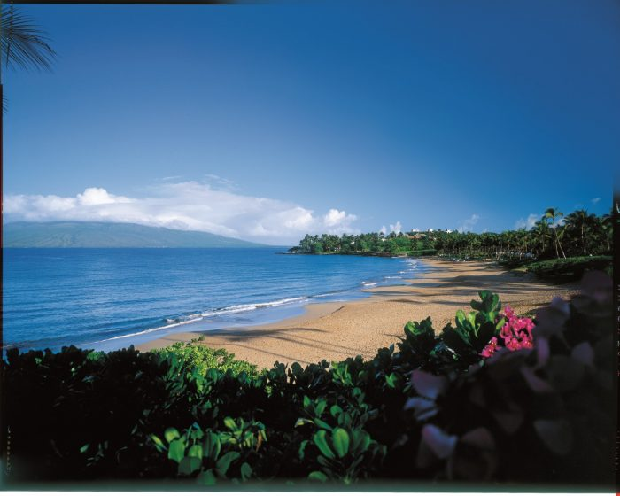 When to visit Hawaii image